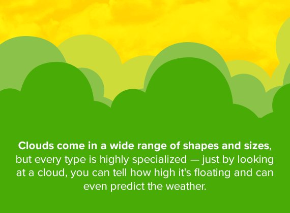 Clouds come in a wide range of shapes and sizes